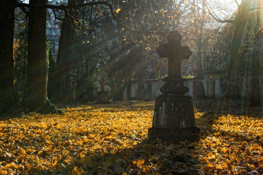 grób wśród jesiennych liści